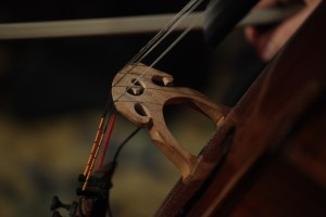 Close Up of Cello at Lighthouse at Chelsea Piers